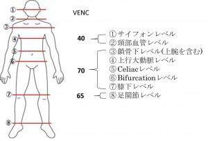 図2測定部位